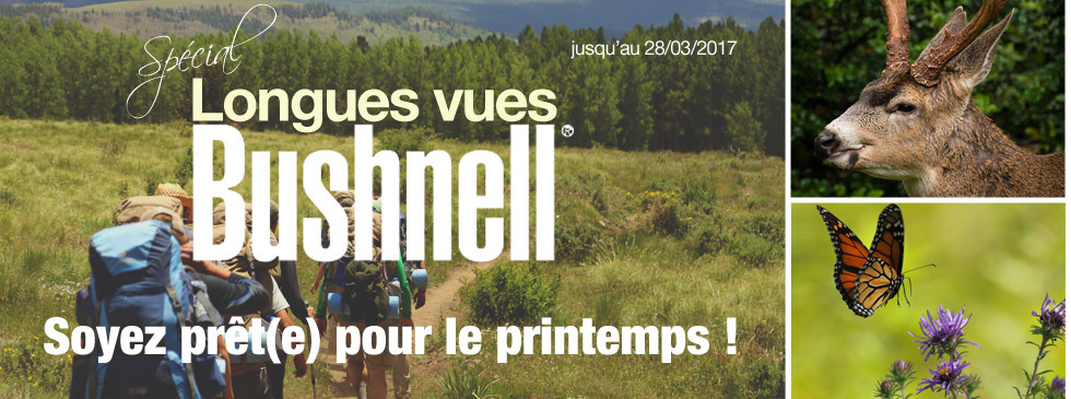 Bushnell News